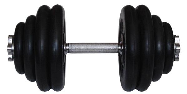 Гантели разборные MB Barbell Гантель разборная обрезиненная 29 кг (диски серии